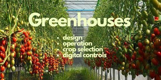 Departments - Greenhouses