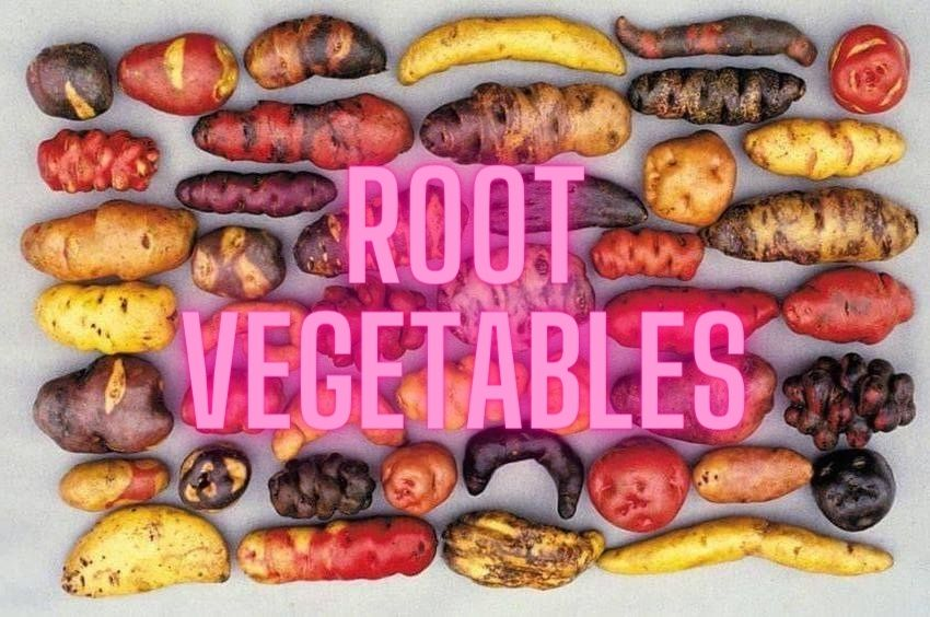 Departments - Root Vegetable