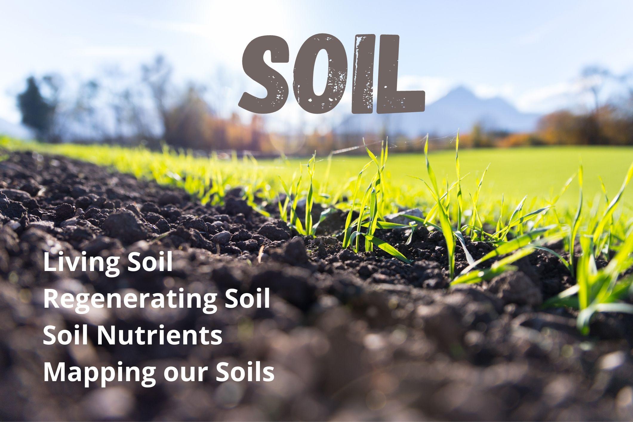 Departments - Soil