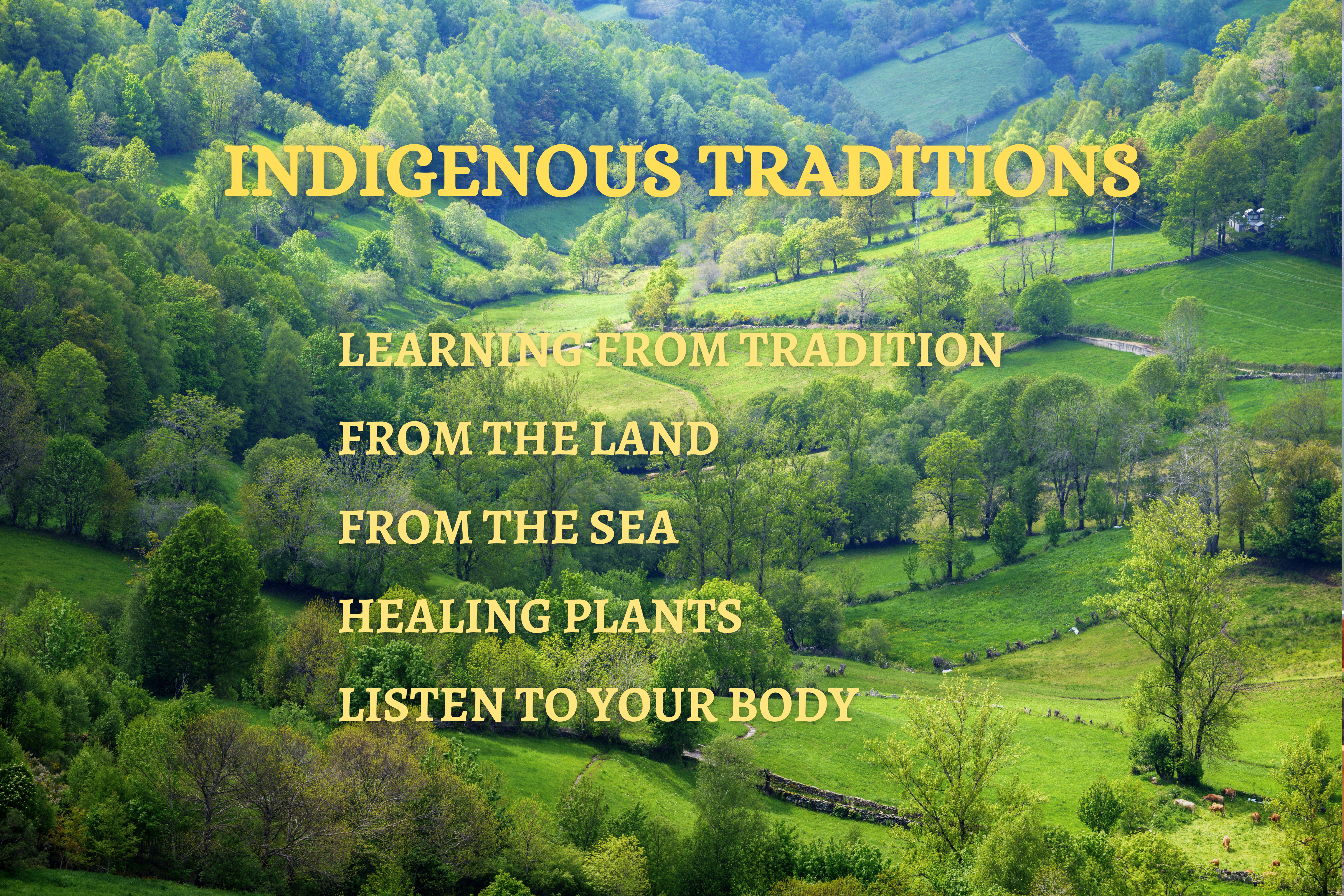 Departments - Indigenous Traditions